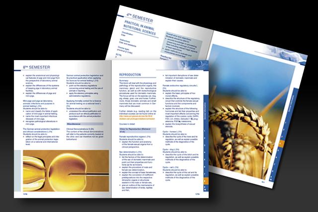 Gestaltung des ECTS Katalogs für die JLU Gießen - Innenseiten