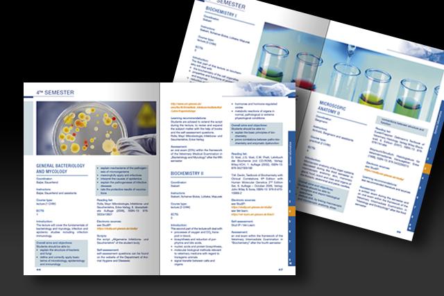 Konzept für den ECTS Katalog der JLU Gießen