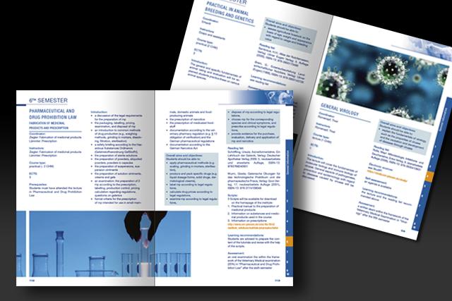 Fremdsprachen Layout für den Katalog der JLU