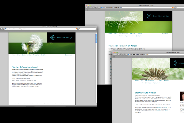 Web-Design mit CMS für Unternehmensberatungen
